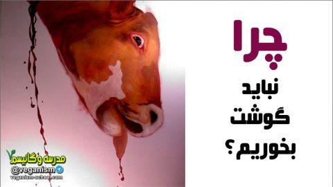 چرا نباید گوشت بخوریم