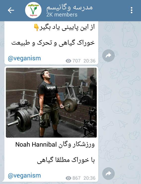 ورزش و گیاهخواری