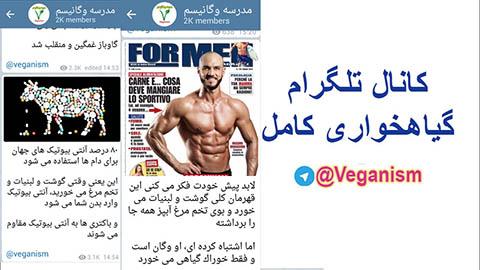 کانال تلگرام رژیم گیاهخواری
