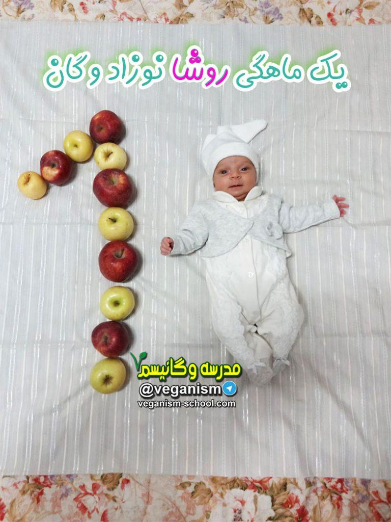 نوزاد وگان