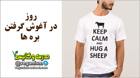 Hug sheeps day